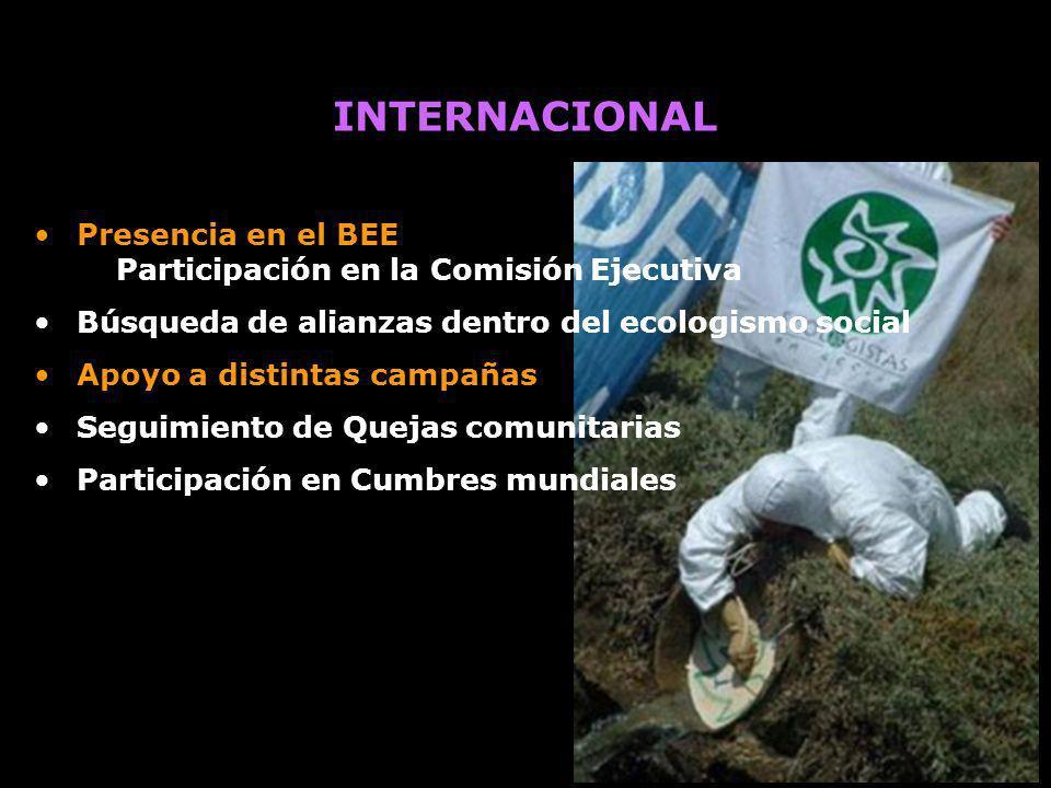 INTERNACIONAL Presencia en el BEE Participación en la Comisión Ejecutiva. Búsqueda de alianzas dentro del ecologismo social.