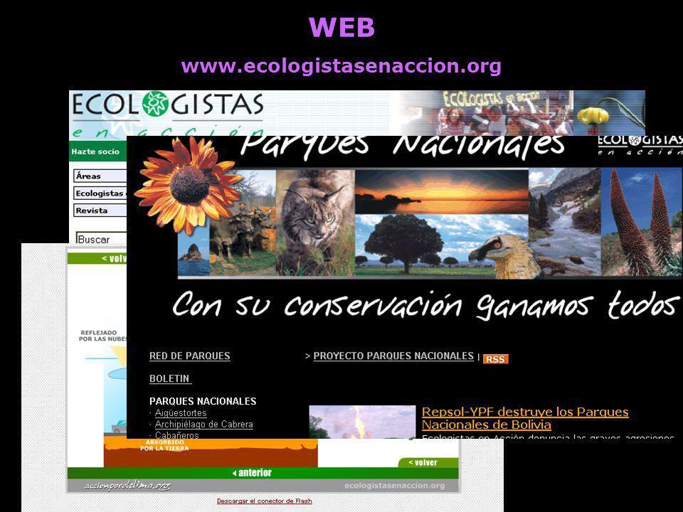 WEB www.ecologistasenaccion.org. Información detallada de las actividades de todos los grupos, áreas y federaciones.