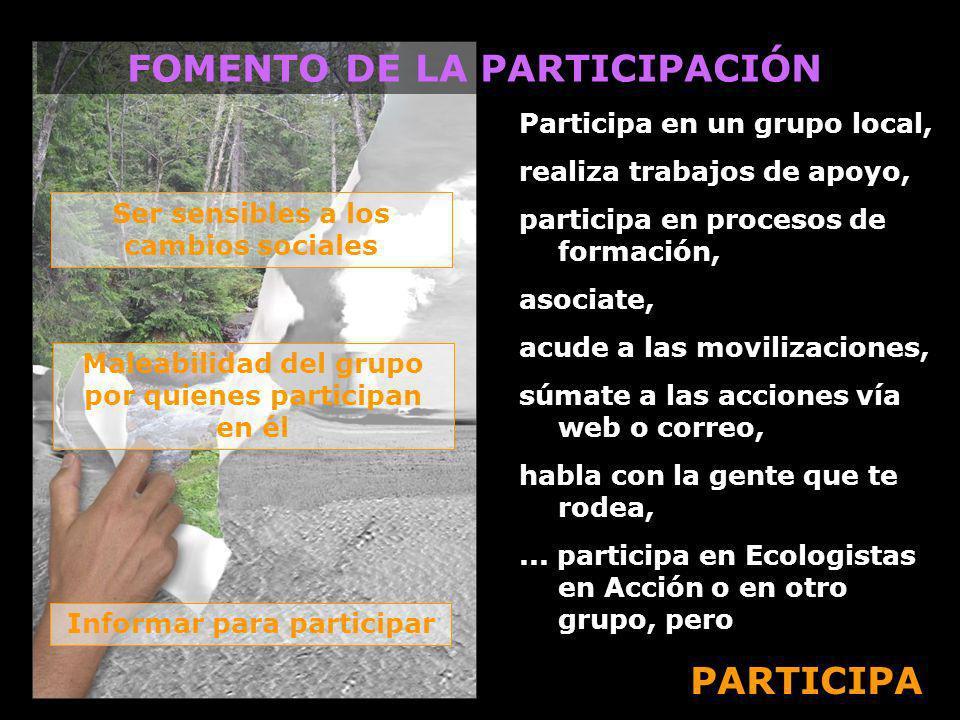 FOMENTO DE LA PARTICIPACIÓN