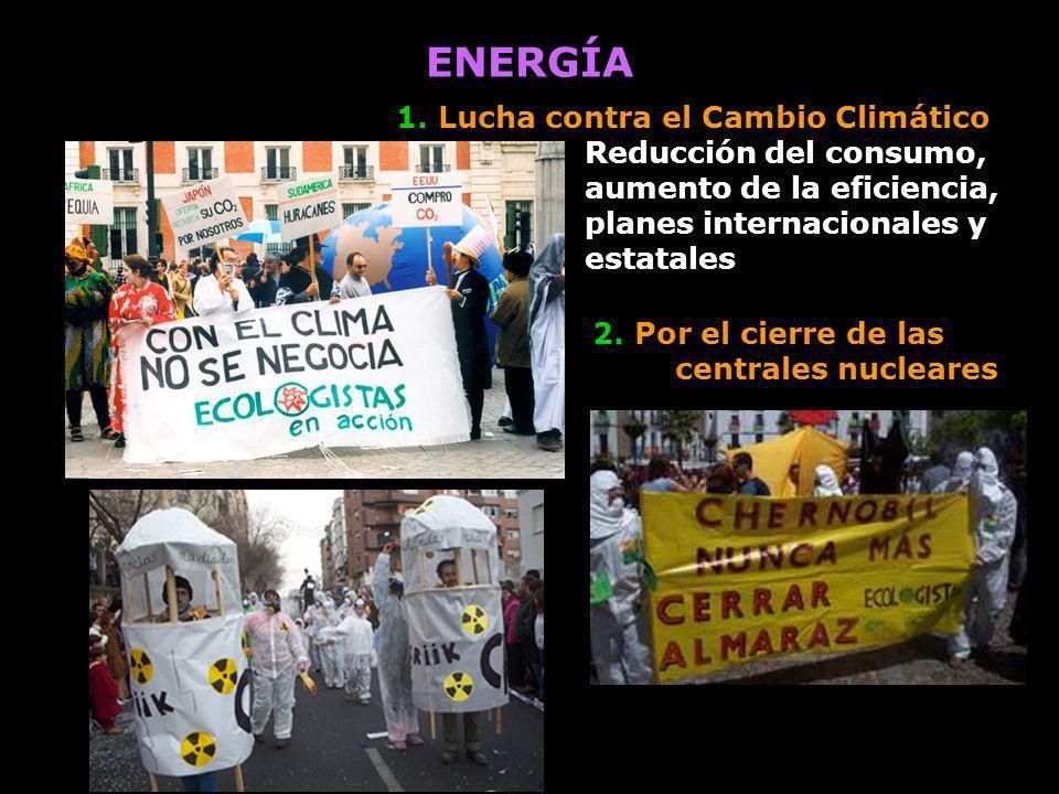 ENERGÍA 1. Lucha contra el Cambio Climático Reducción del consumo, aumento de la eficiencia, planes internacionales y estatales.
