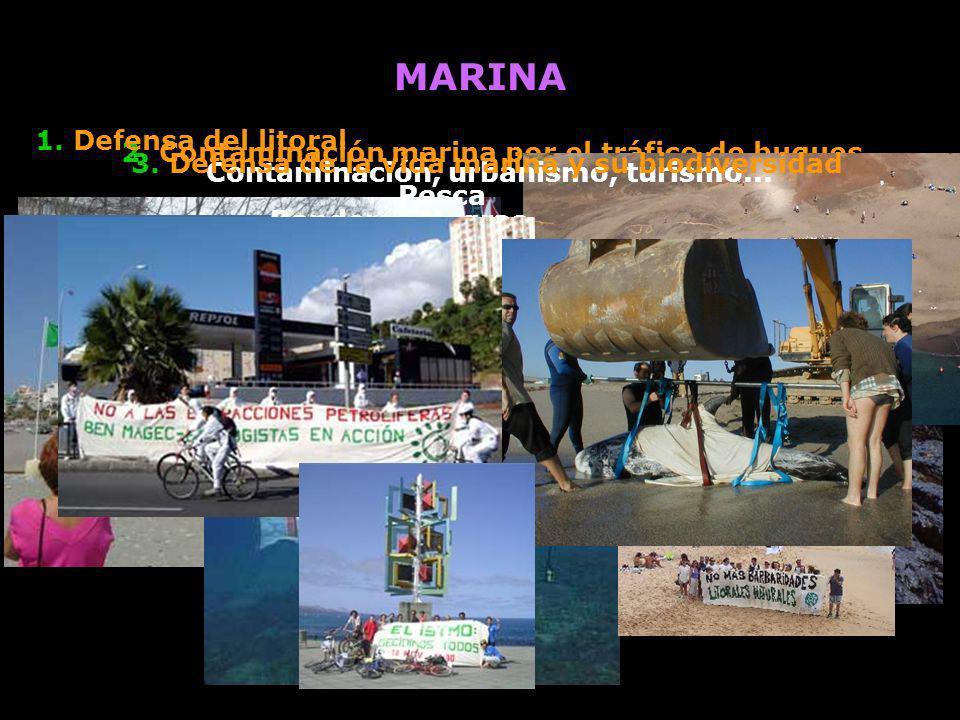 MARINA 1. Defensa del litoral Contaminación, urbanismo, turismo...