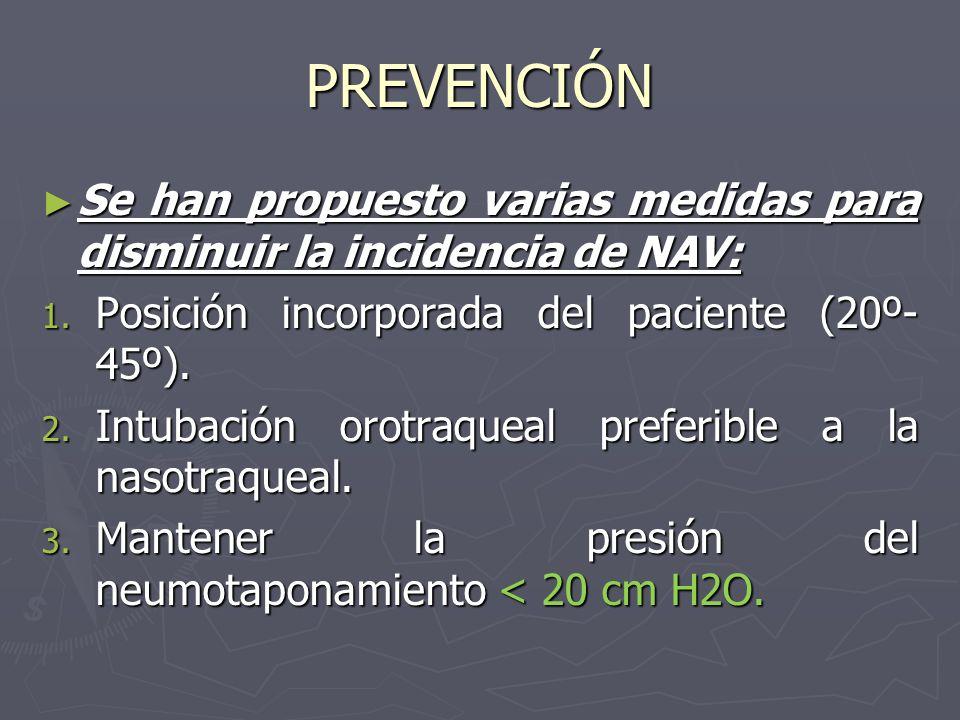 PREVENCIÓN Se han propuesto varias medidas para disminuir la incidencia de NAV: Posición incorporada del paciente (20º-45º).