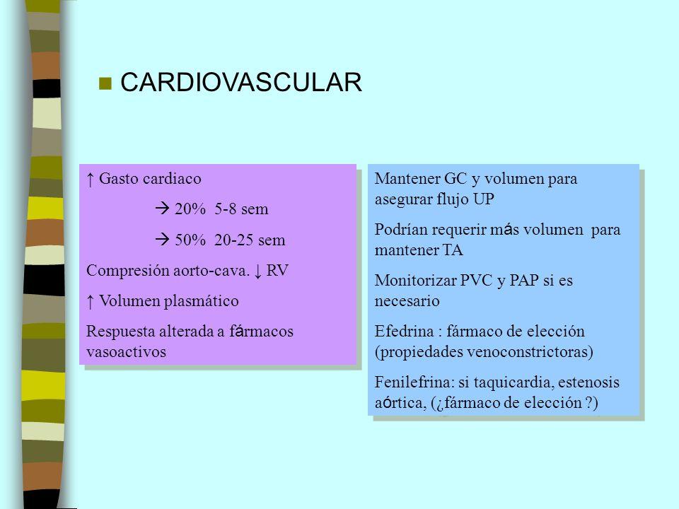 CARDIOVASCULAR ↑ Gasto cardiaco  20% 5-8 sem  50% 20-25 sem