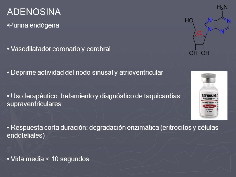 ADENOSINA Purina endógena Vasodilatador coronario y cerebral
