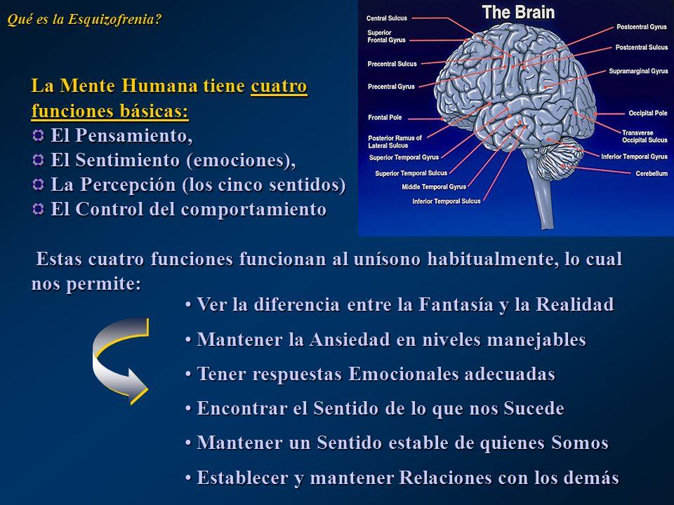 La Mente Humana tiene cuatro funciones básicas: El Pensamiento,