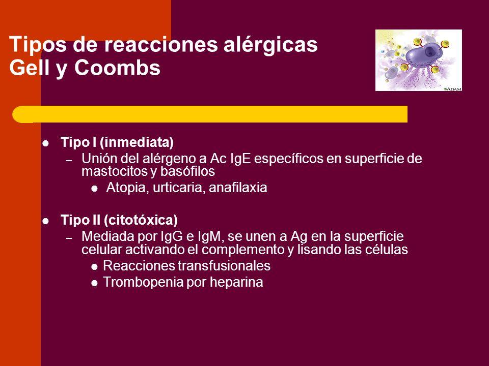 Tipos de reacciones alérgicas Gell y Coombs