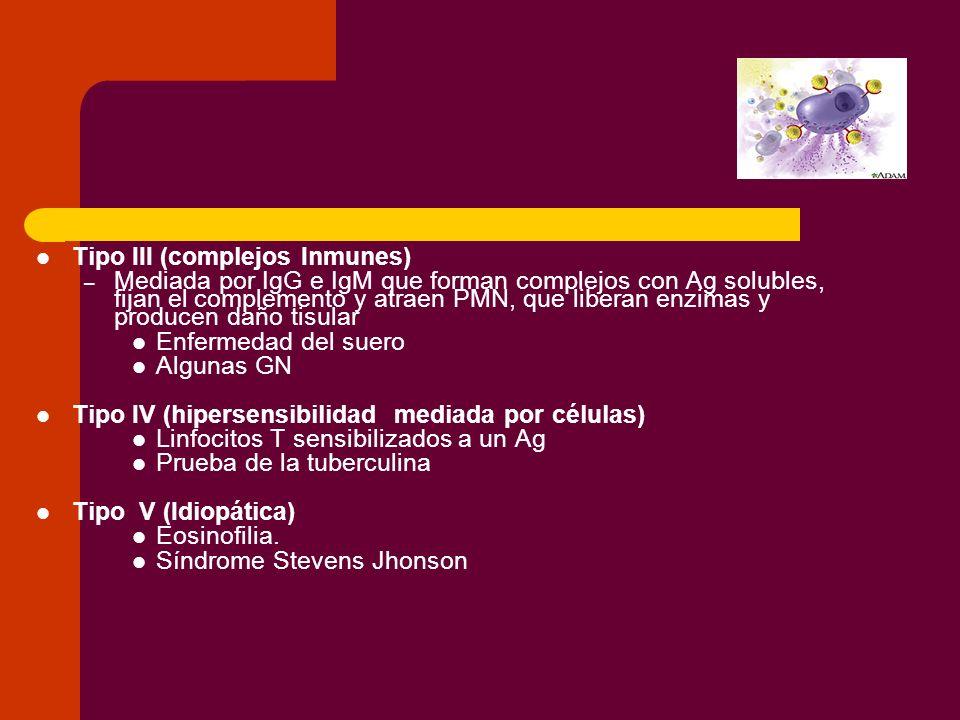 Tipo III (complejos Inmunes)