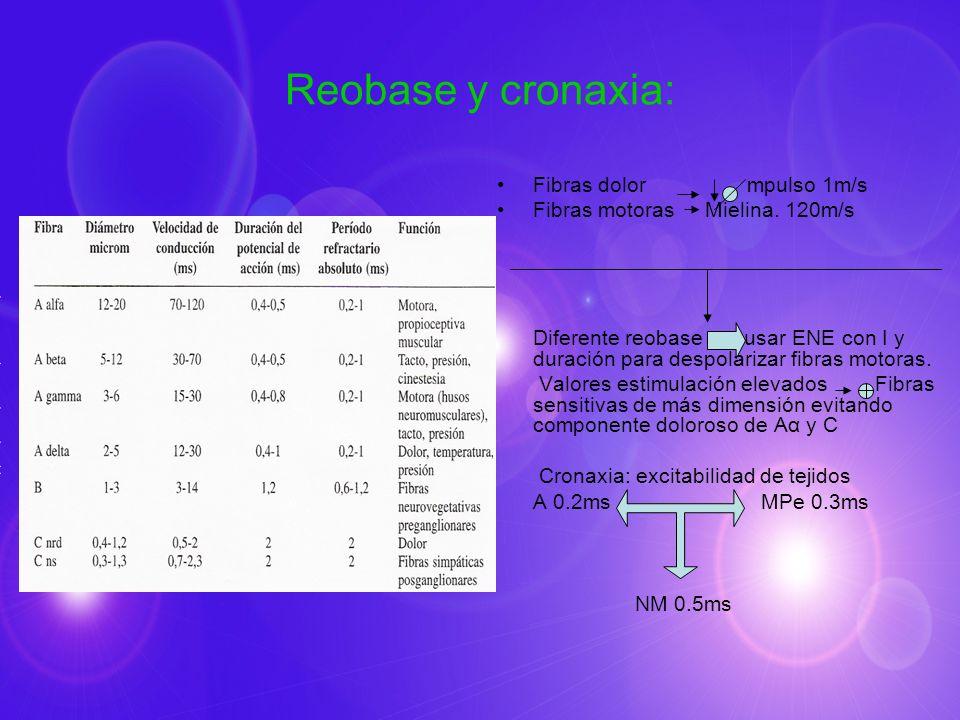 Reobase y cronaxia: Fibras dolor mpulso 1m/s