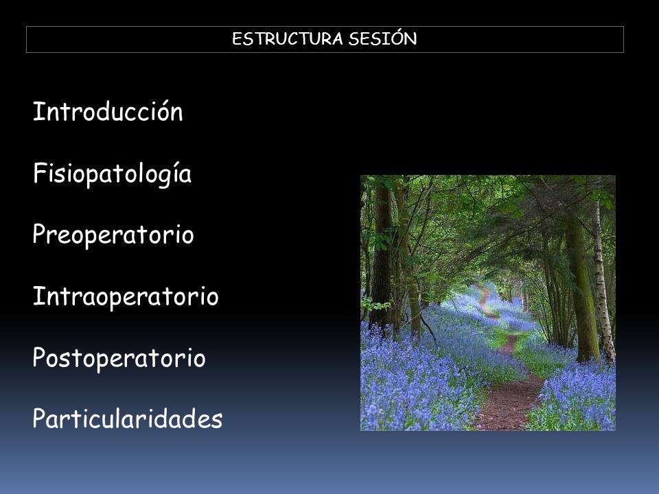 Introducción Fisiopatología Preoperatorio Intraoperatorio