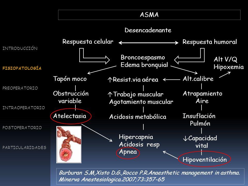 Broncoespasmo Edema bronquial Alt V/Q Hipoxemia