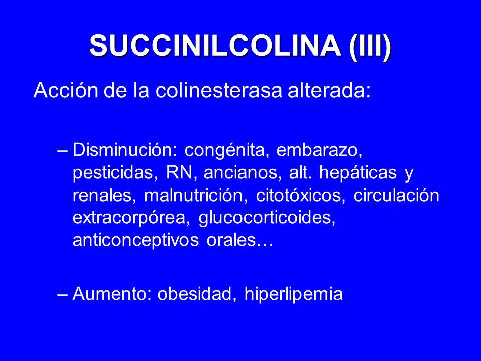 SUCCINILCOLINA (III) Acción de la colinesterasa alterada: