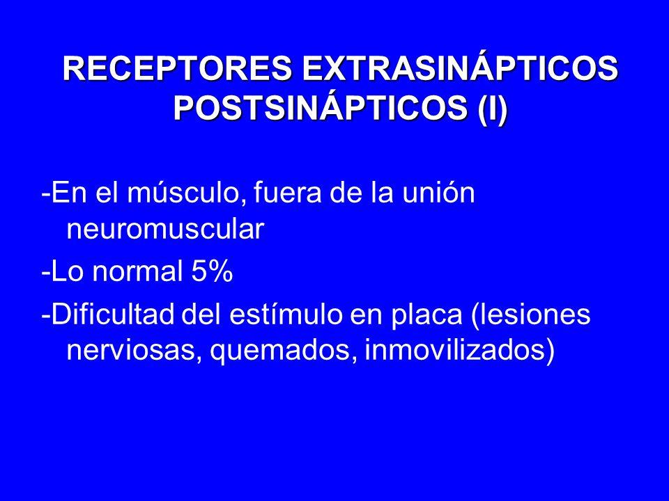 RECEPTORES EXTRASINÁPTICOS POSTSINÁPTICOS (I)