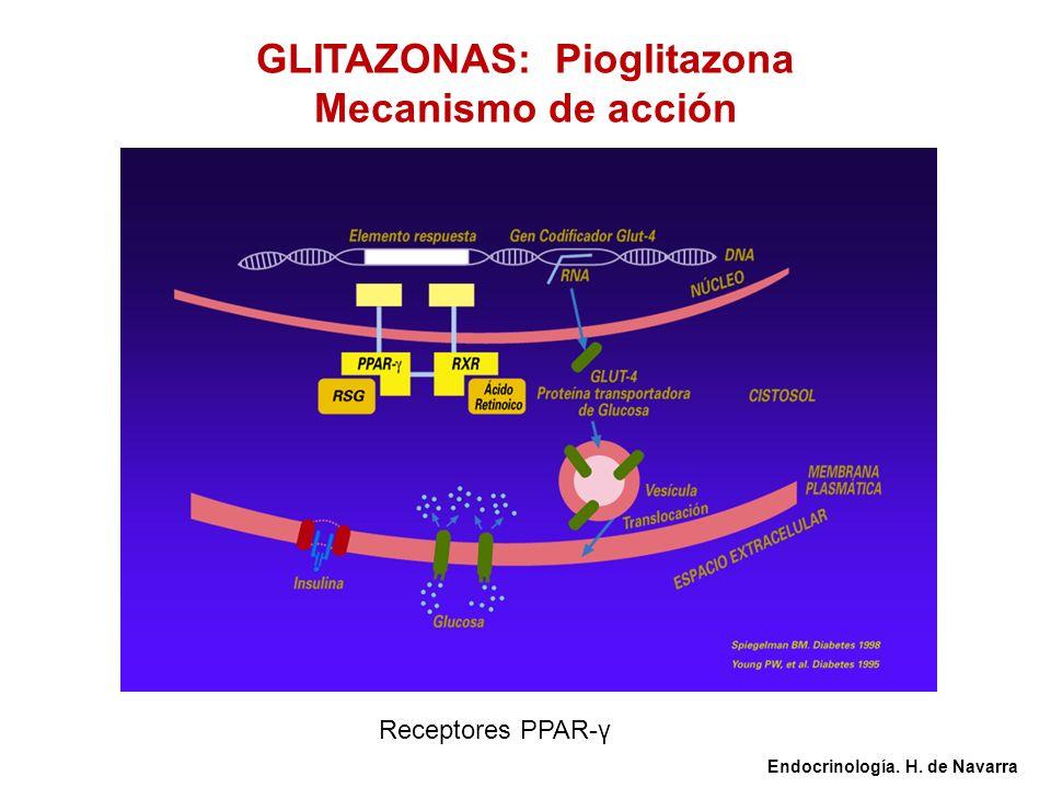 GLITAZONAS: Pioglitazona