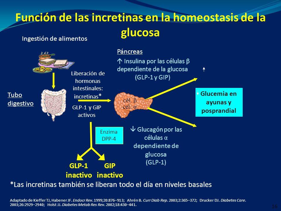 Función de las incretinas en la homeostasis de la glucosa