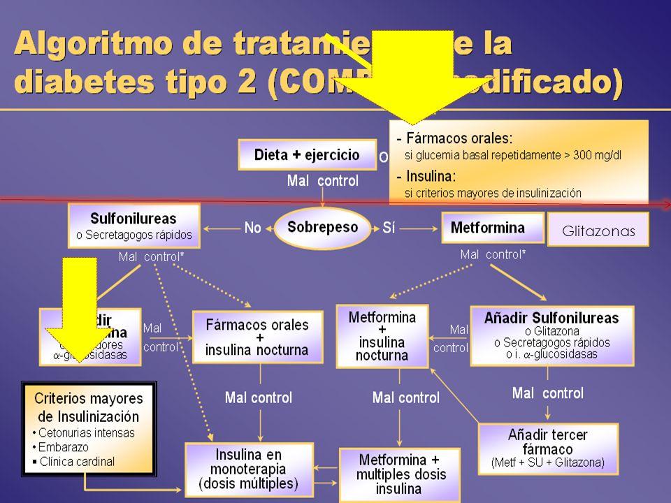 Glitazonas Valorar una u otra opción en función del grado de hiperglucemia y de las características individuales de cada caso.