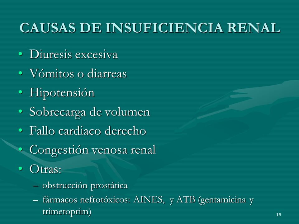 CAUSAS DE INSUFICIENCIA RENAL