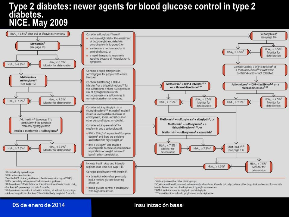 Type 2 diabetes: newer agents for blood glucose control in type 2 diabetes. NICE. May 2009
