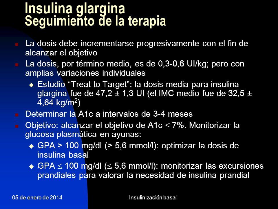 Insulina glargina Seguimiento de la terapia
