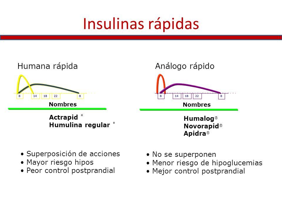 Insulinas rápidas Humana rápida Análogo rápido