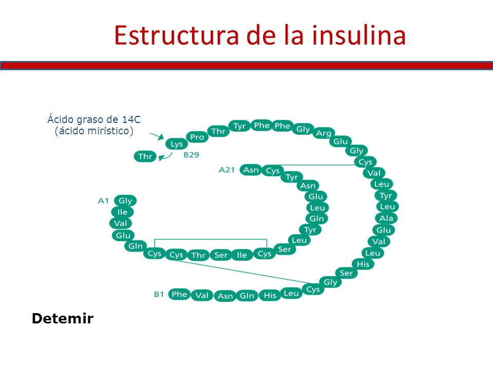 Estructura de la insulina