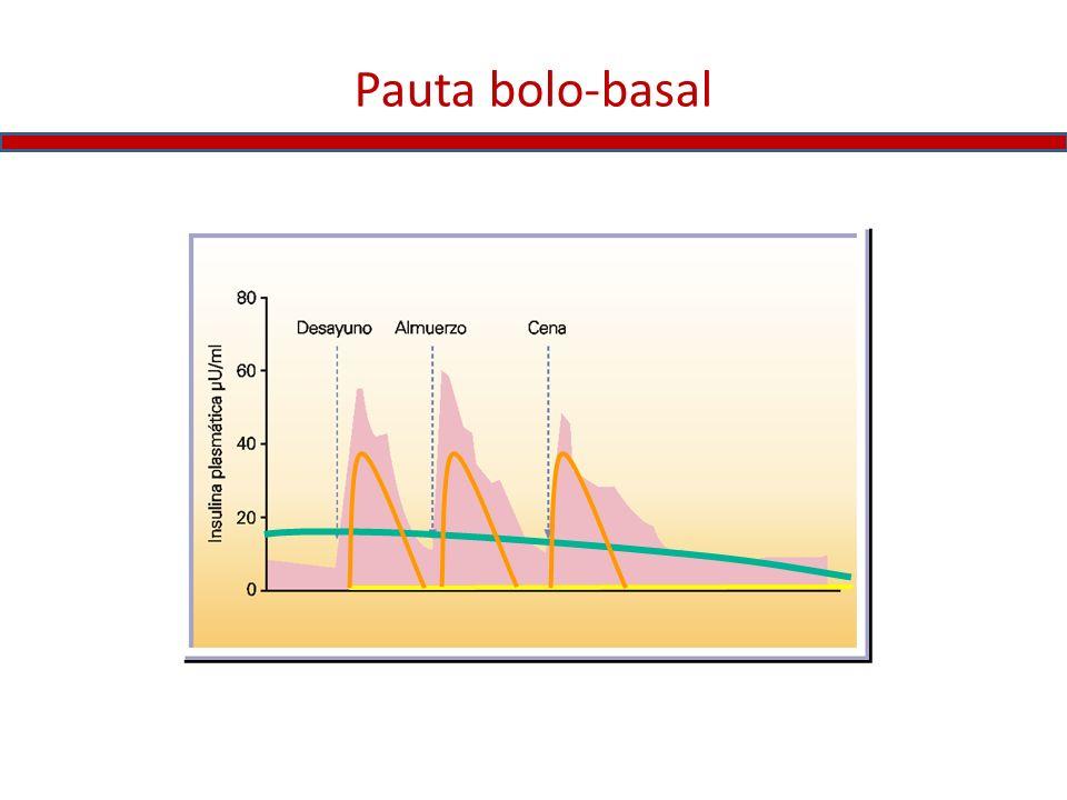 Pauta bolo-basal
