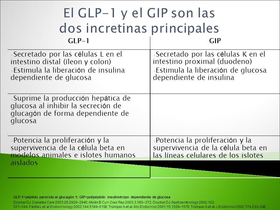 El GLP-1 y el GIP son las dos incretinas principales