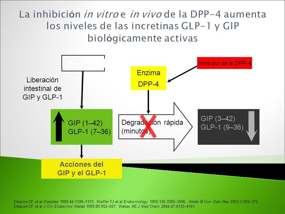 intestinal de GIP y GLP-1