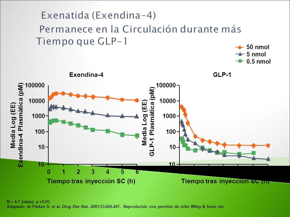 Exenatida (Exendina-4) Permanece en la Circulación durante más Tiempo que GLP-1