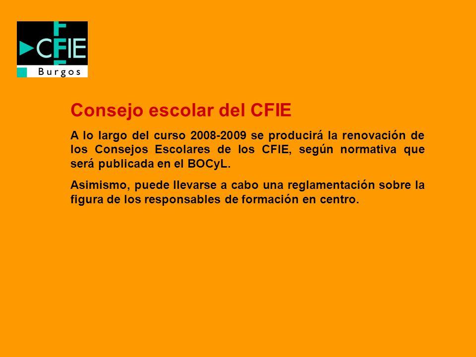 Consejo escolar del CFIE