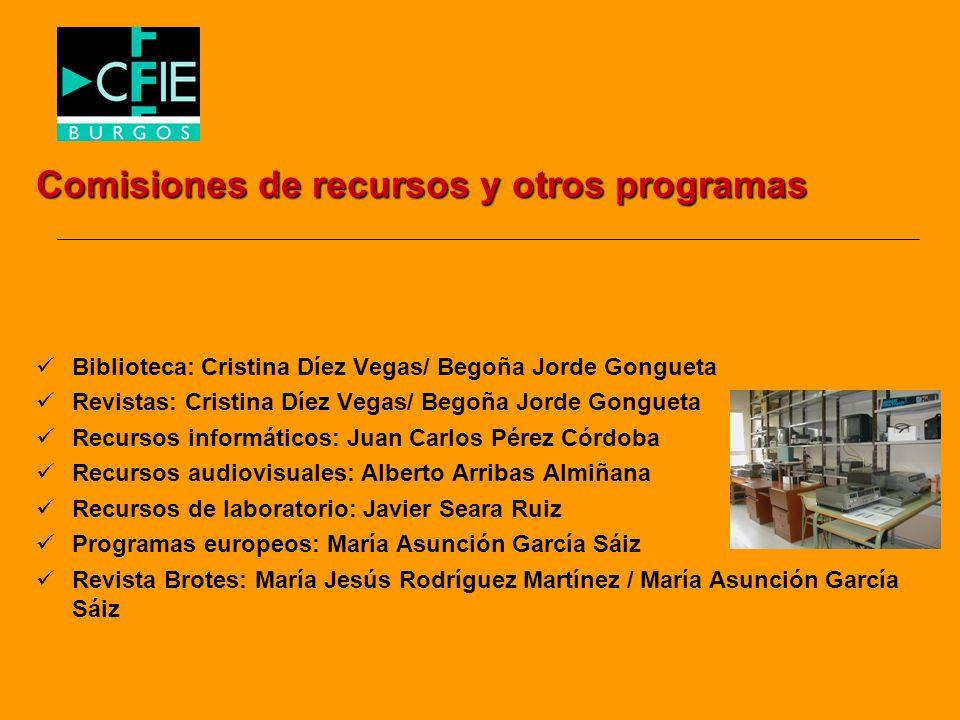 Comisiones de recursos y otros programas