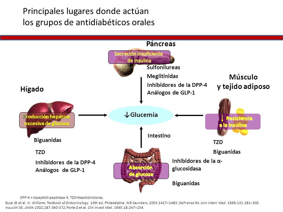 Músculo y tejido adiposo