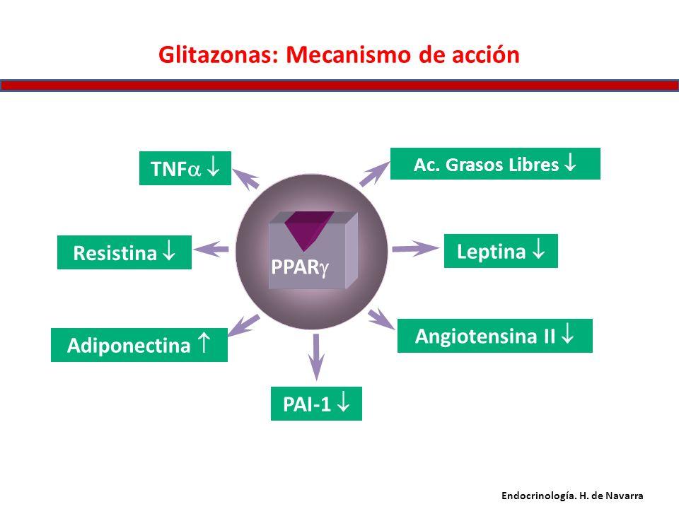 Glitazonas: Mecanismo de acción