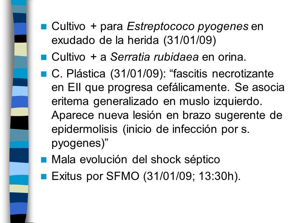 Cultivo + para Estreptococo pyogenes en exudado de la herida (31/01/09)