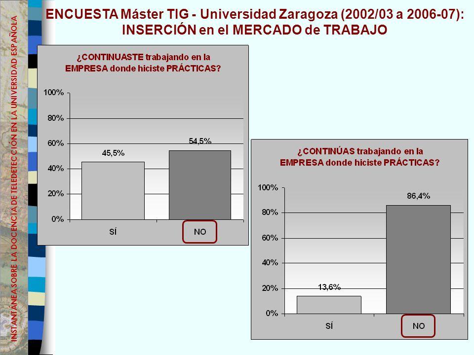 ENCUESTA Máster TIG - Universidad Zaragoza (2002/03 a 2006-07):