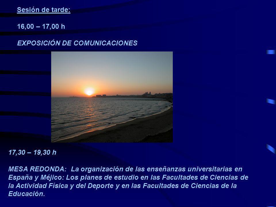Sesión de tarde: 16,00 – 17,00 h. EXPOSICIÓN DE COMUNICACIONES. 17,30 – 19,30 h.