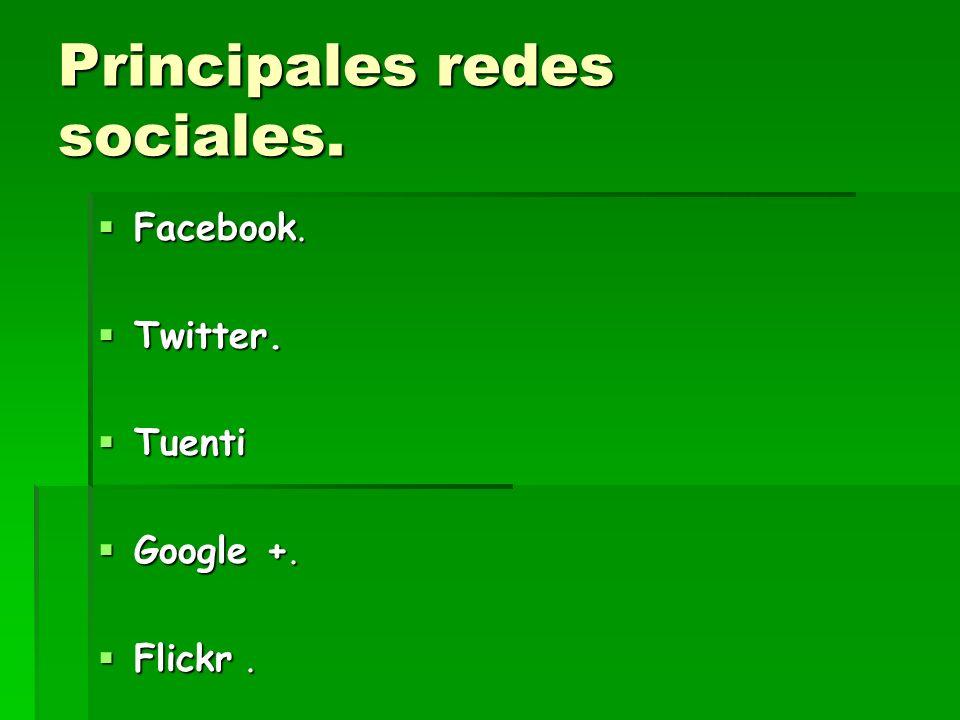 Principales redes sociales.