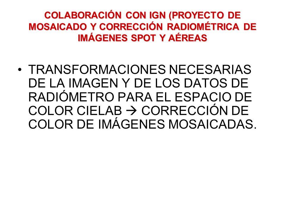 COLABORACIÓN CON IGN (PROYECTO DE MOSAICADO Y CORRECCIÓN RADIOMÉTRICA DE IMÁGENES SPOT Y AÉREAS