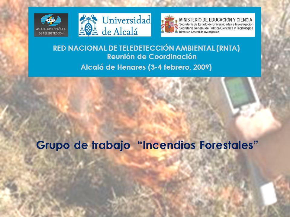 Grupo de trabajo Incendios Forestales