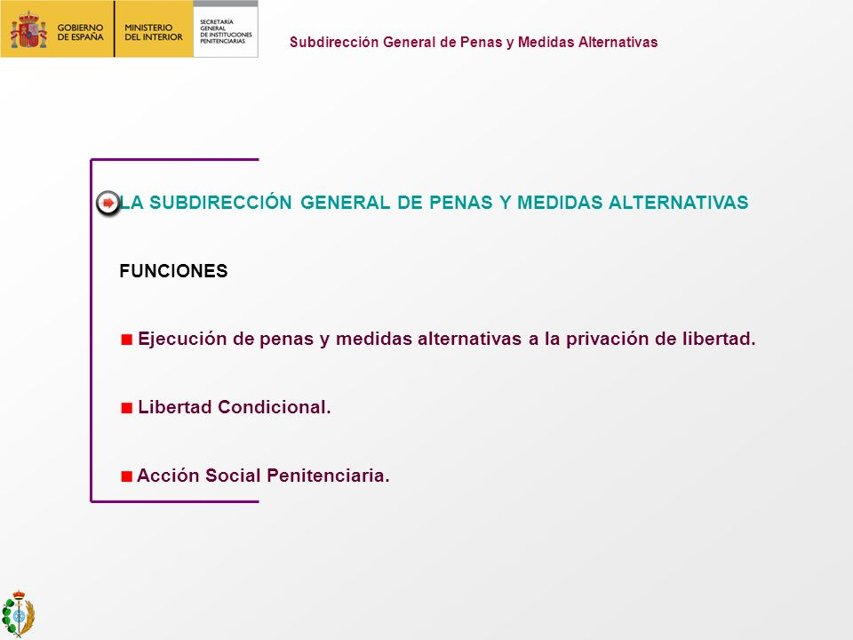 Subdirección General de Penas y Medidas Alternativas