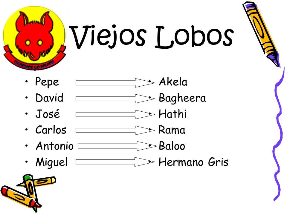 Viejos Lobos Pepe David José Carlos Antonio Miguel Akela Bagheera