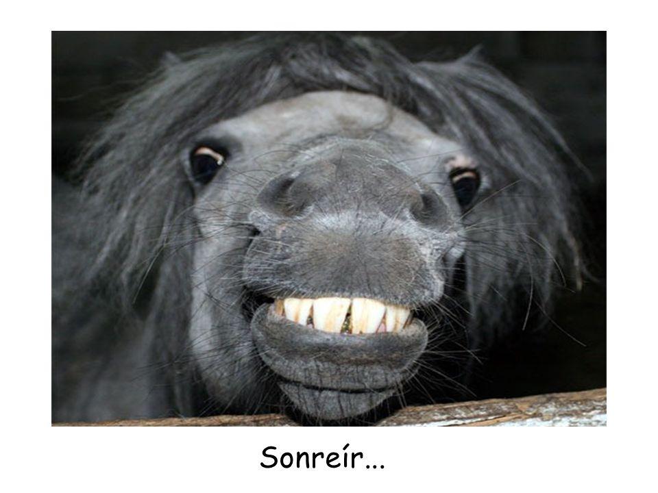 Sonreír...