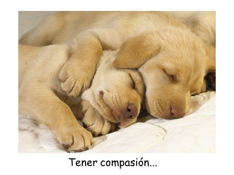 Tener compasión...