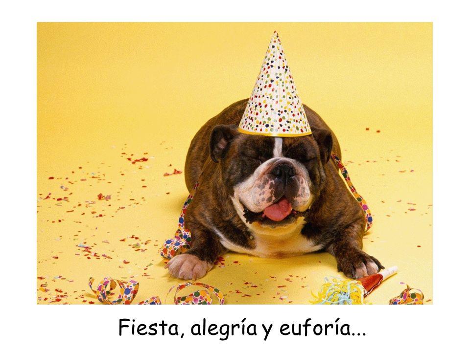 Fiesta, alegría y euforía...