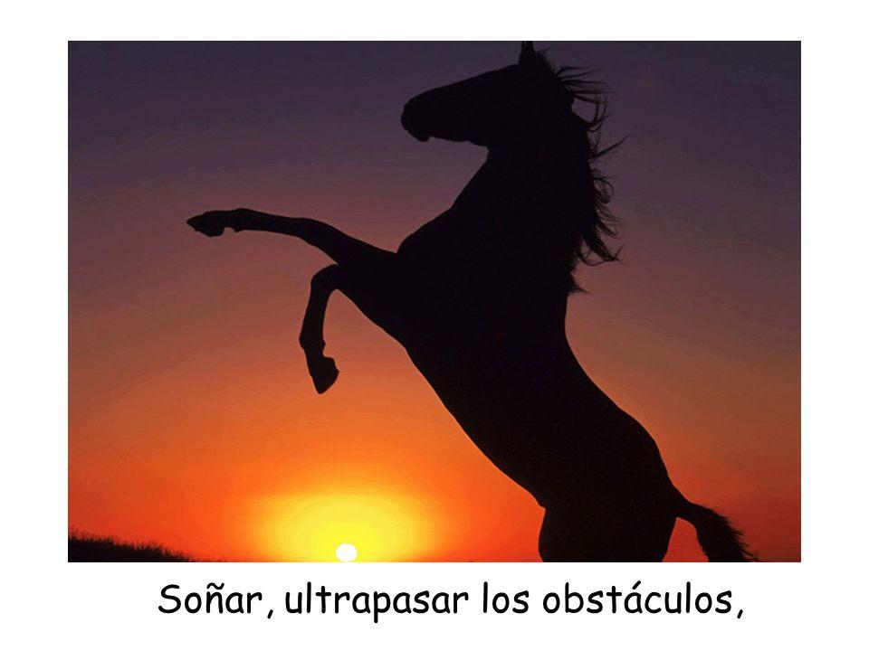 Soñar, ultrapasar los obstáculos,