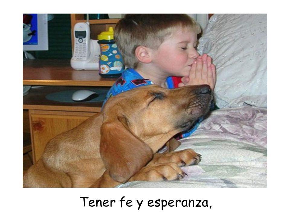 Tener fe y esperanza,