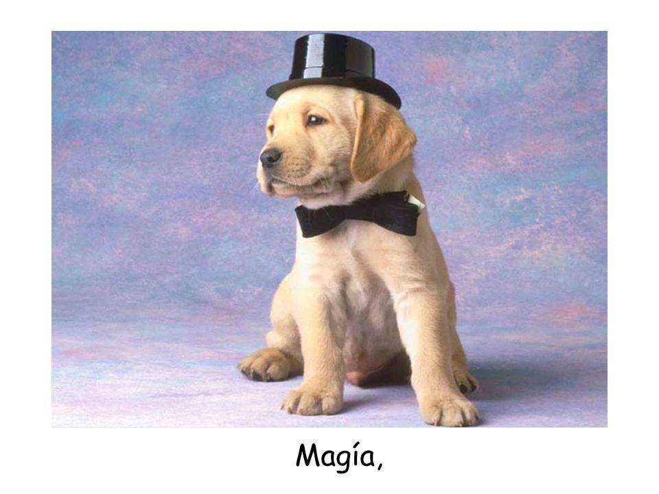 Magía,