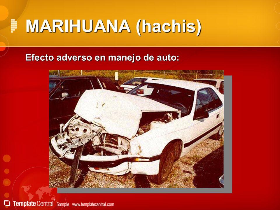MARIHUANA (hachis) Efecto adverso en manejo de auto: