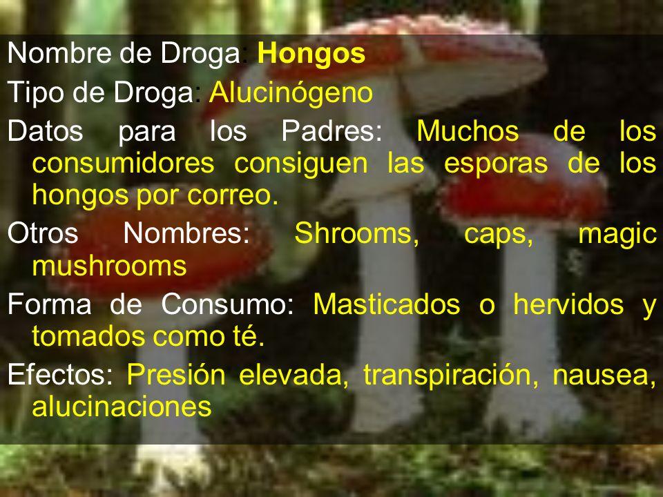 Nombre de Droga: Hongos