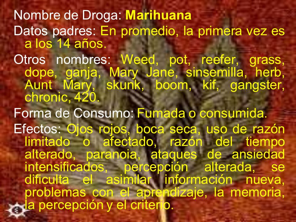 Nombre de Droga: Marihuana