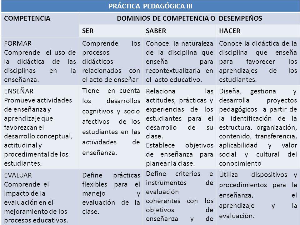 PRÁCTICA PEDAGÓGICA III DOMINIOS DE COMPETENCIA O DESEMPEÑOS